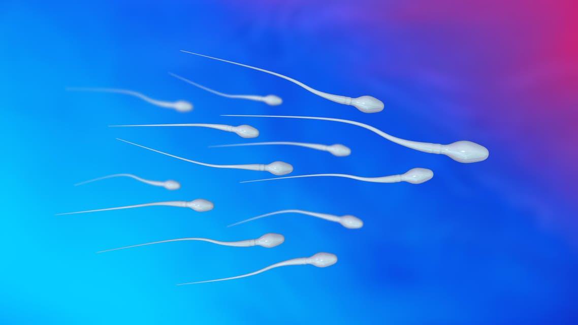 sperm shtterstock