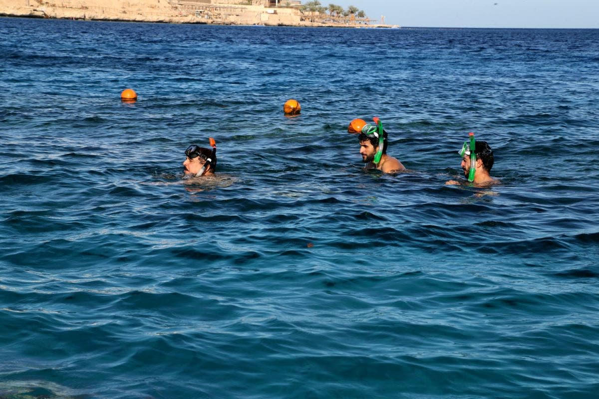 The Bahraini king and his family swim in the Red Sea. (BNA)