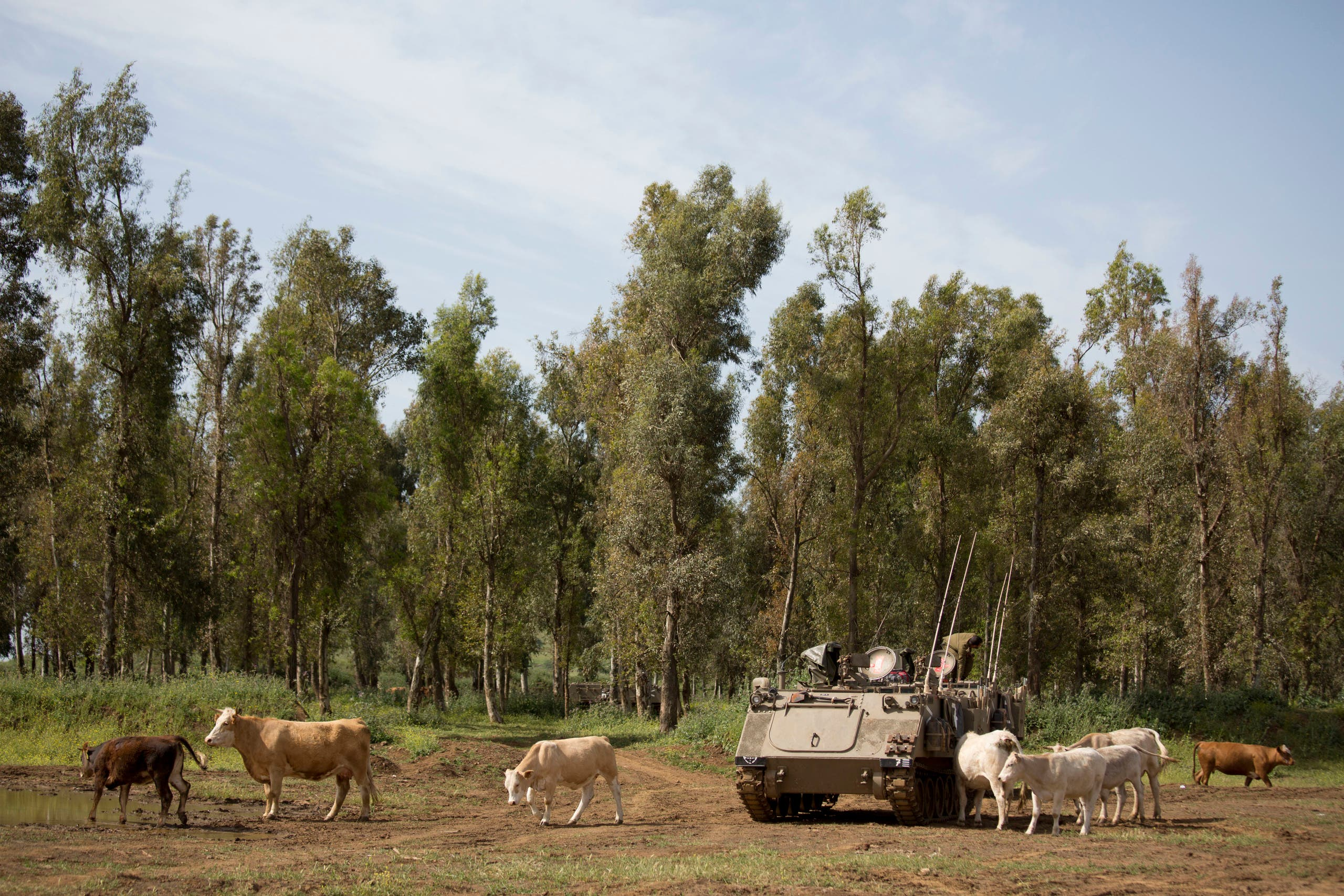Cowboys in Golan Heights