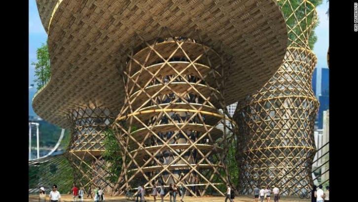 قفزة بأسعار الأخشاب عالمياً بـ 340% خلال 12 شهرا