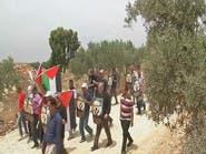 مسيرات فلسطينية اليوم مع الذكرى الـ68 للنكبة