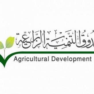 صندوق التنمية الزراعية السعودي يعتمد قروضاً تمويلية بـ482 مليون ريال