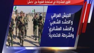 ما هي الفلوجة في العراق؟