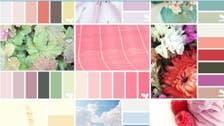 Wedding planning: Color schemes for summer ceremonies