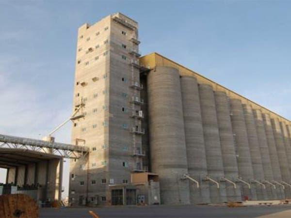 """صندوق الاستثمارات يعتزم شراء مطاحن 14 فرعا لـ""""الحبوب"""""""