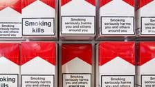 UAE body mulls smoking ban in public spaces