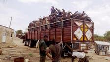 50,000 flee Boko Haram attacks in Niger: UN