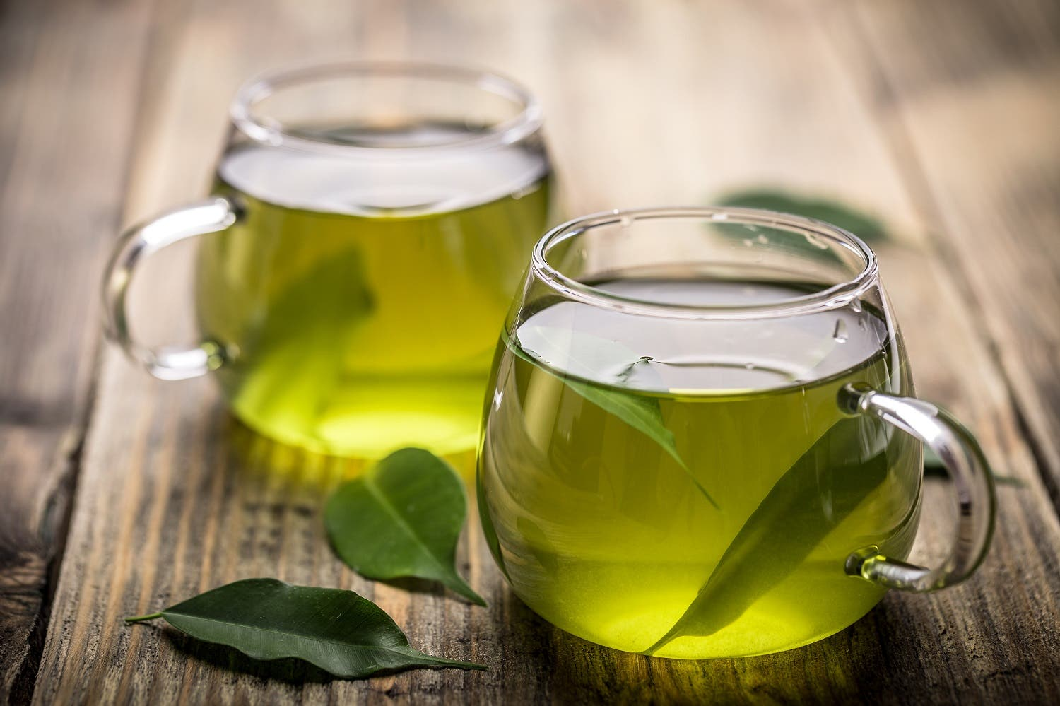 green tea shutterstock