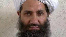 Qaeda chief backs new Taliban head as 'emir of believers'