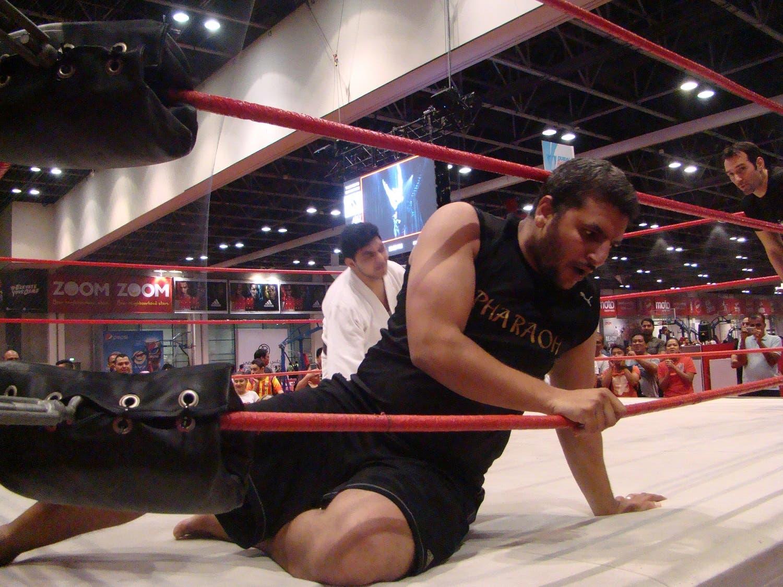 The Pharoah takes a quick break after being catapulted by Khaleel Khan. (Tarek Ali Ahmad, Al Arabiya English)