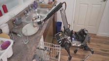 فيديو.. كلب آلي ينجز لك أعمال منزلك في 90 دقيقة