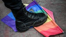 German politicians detained at Istanbul gay demo