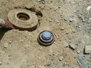 القوات السعودية تبطل ألغاما زرعتها ميليشيا الحوثي وصالح