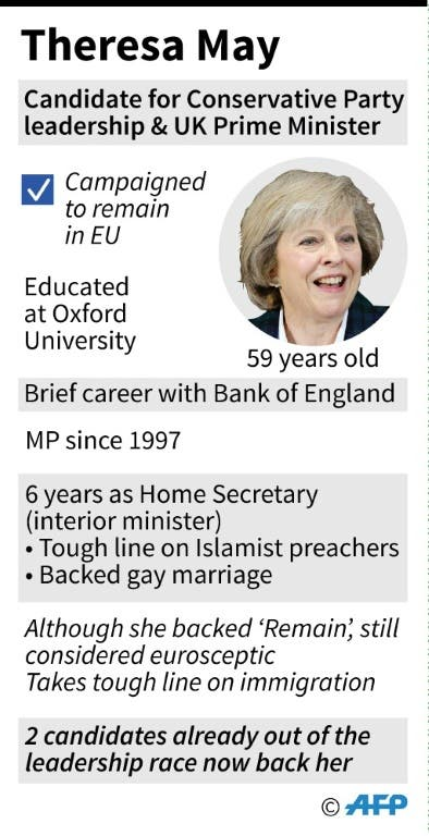 theresa may infographic
