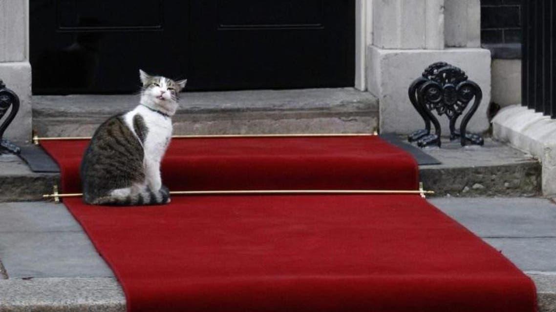 Larry the cat reuters