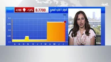 خبيرة: مصر لن تعوّم الجنيه قبل رفع احتياطيها النقدي