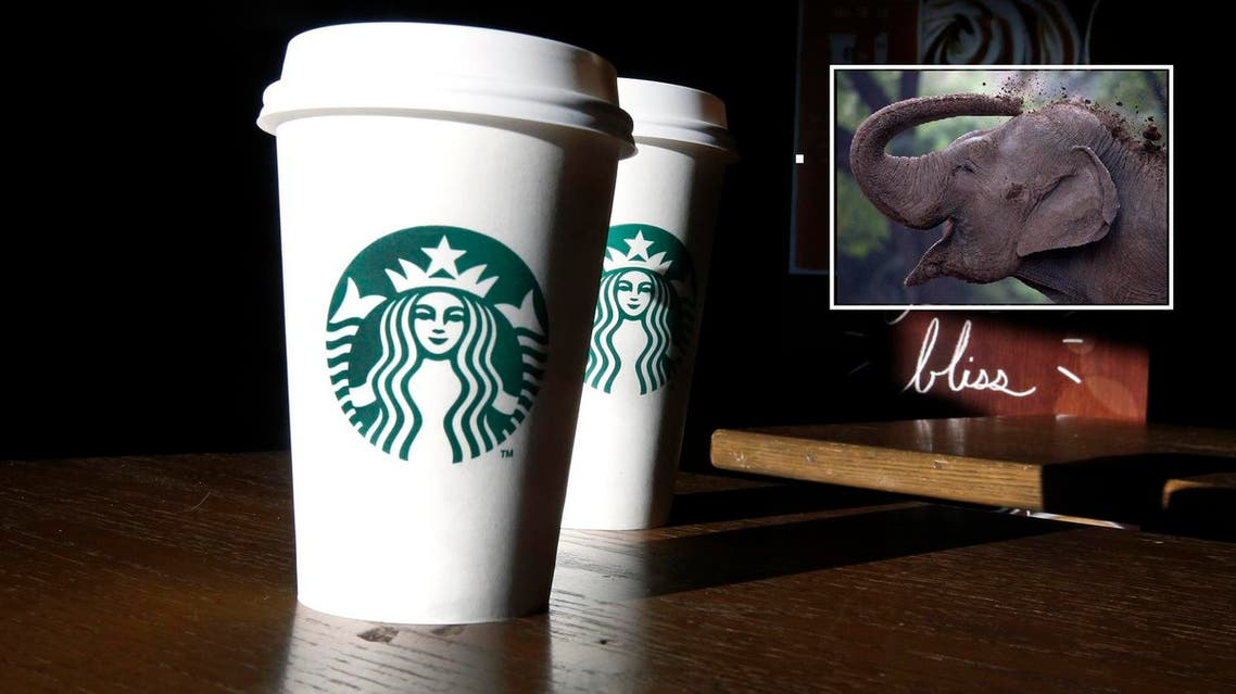 NO elephant dung in Starbucks coffee in the UAE say Dubai officials (Photo: AP)