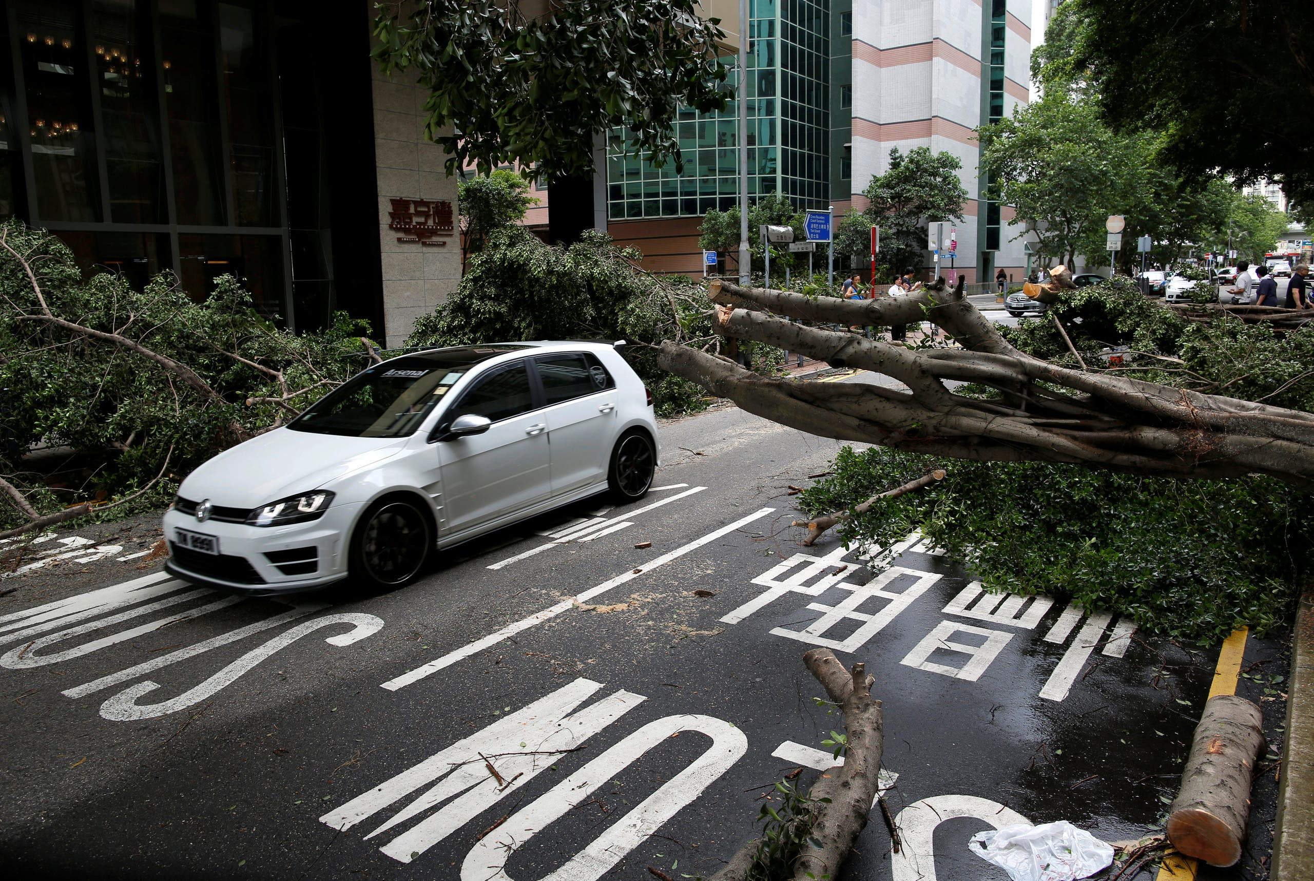 A vehicle drives among trees uprooted by strong winds from Typhoon Nida in Hong Kong, China August 2, 2016. REUTERS