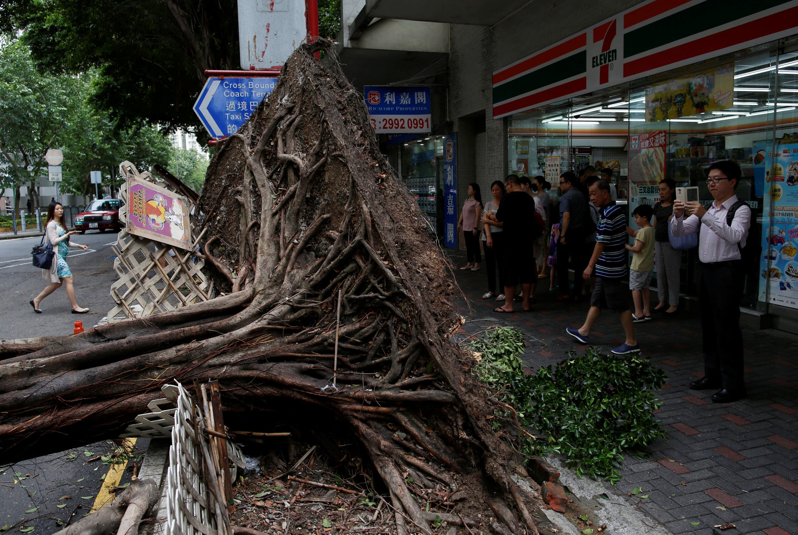 A man takes photo of an uprooted tree after Typhoon Nida hit Hong Kong, China August 2, 2016. REUTERS