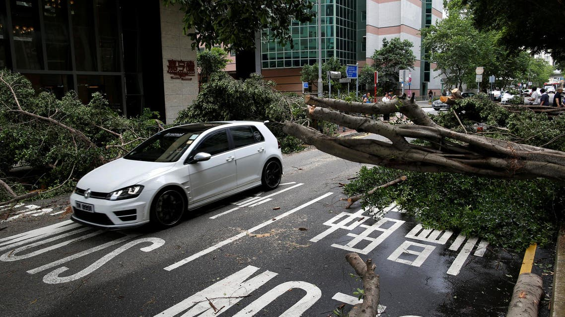 A car is driven among trees that had been uprooted by strong winds from Typhoon Nida (Photo: Reuters)