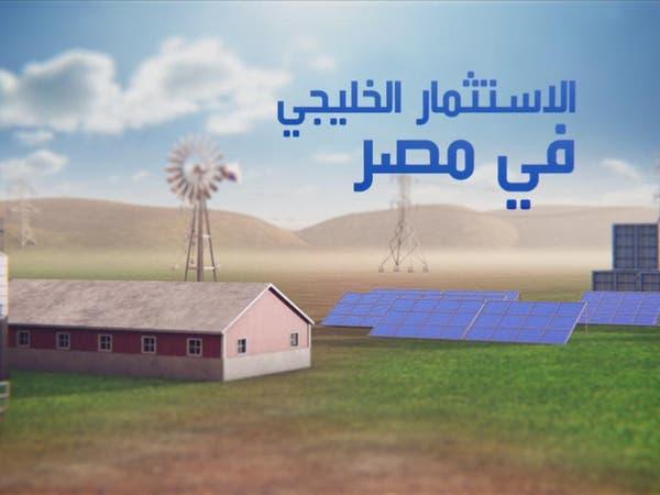 """4 وزراء مصريين يتحدثون لـ""""العربية"""" عن الاستثمار الخليجي"""