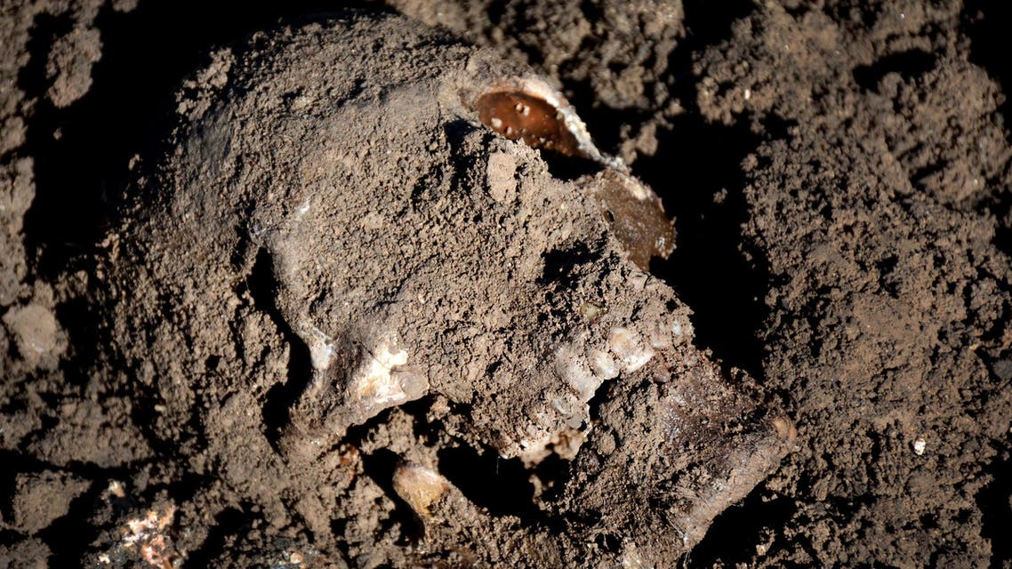 This image released by the the Mass Graves Directorate of the Kurdish Regional Government shows a human skull in a mass grave containing Yazidis killed by Islamic State militants in the Sinjar region of northern Iraq in May, 2015. An analysis by The Associated Press has found 72 mass graves left behind by Islamic State extremists in Iraq and Syria, and many more are expected to be discovered as the group loses territory. (Kurdish Mass Graves Directorate via AP)