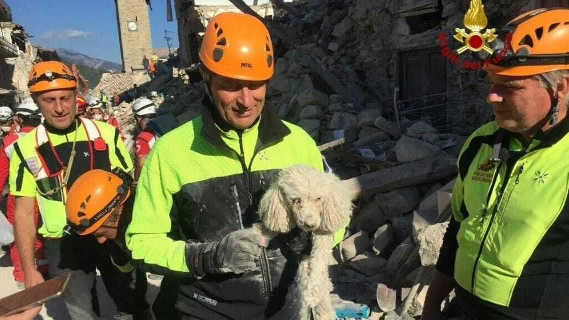 A firefighter holds a rescued dog in Amatrice, central Italy, Thursday, Aug. 25, 2016. (reuters)