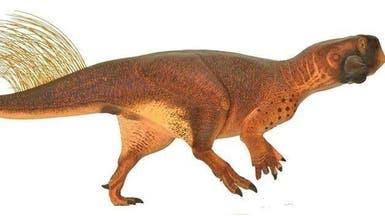 حددوا لون ديناصور أليف عاش قبل 120 مليون عام
