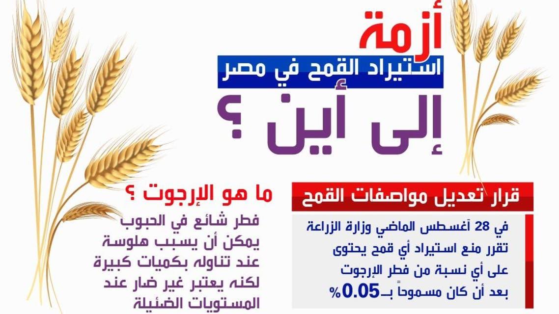 القمح في مصر