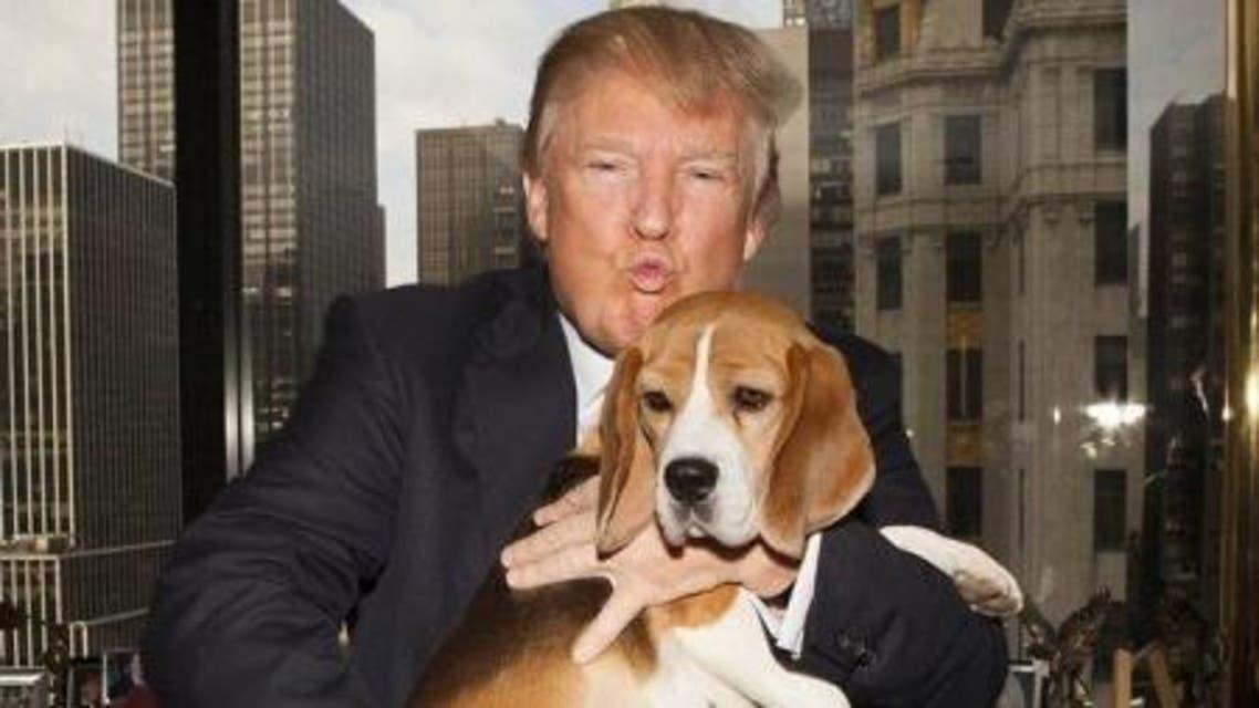 رئيسية كلاب البيت الأبيض