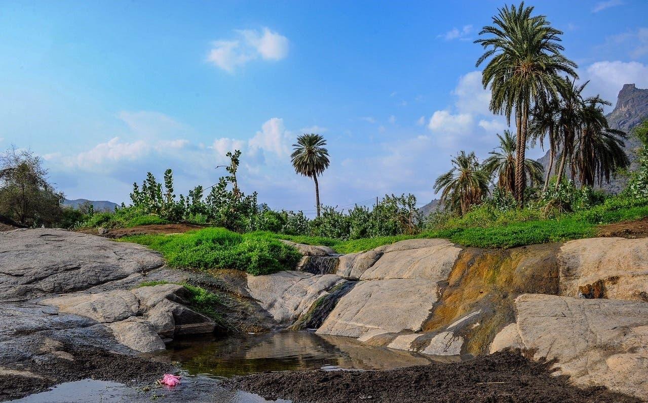 Al-Qunfudah province (Al Arabiya)