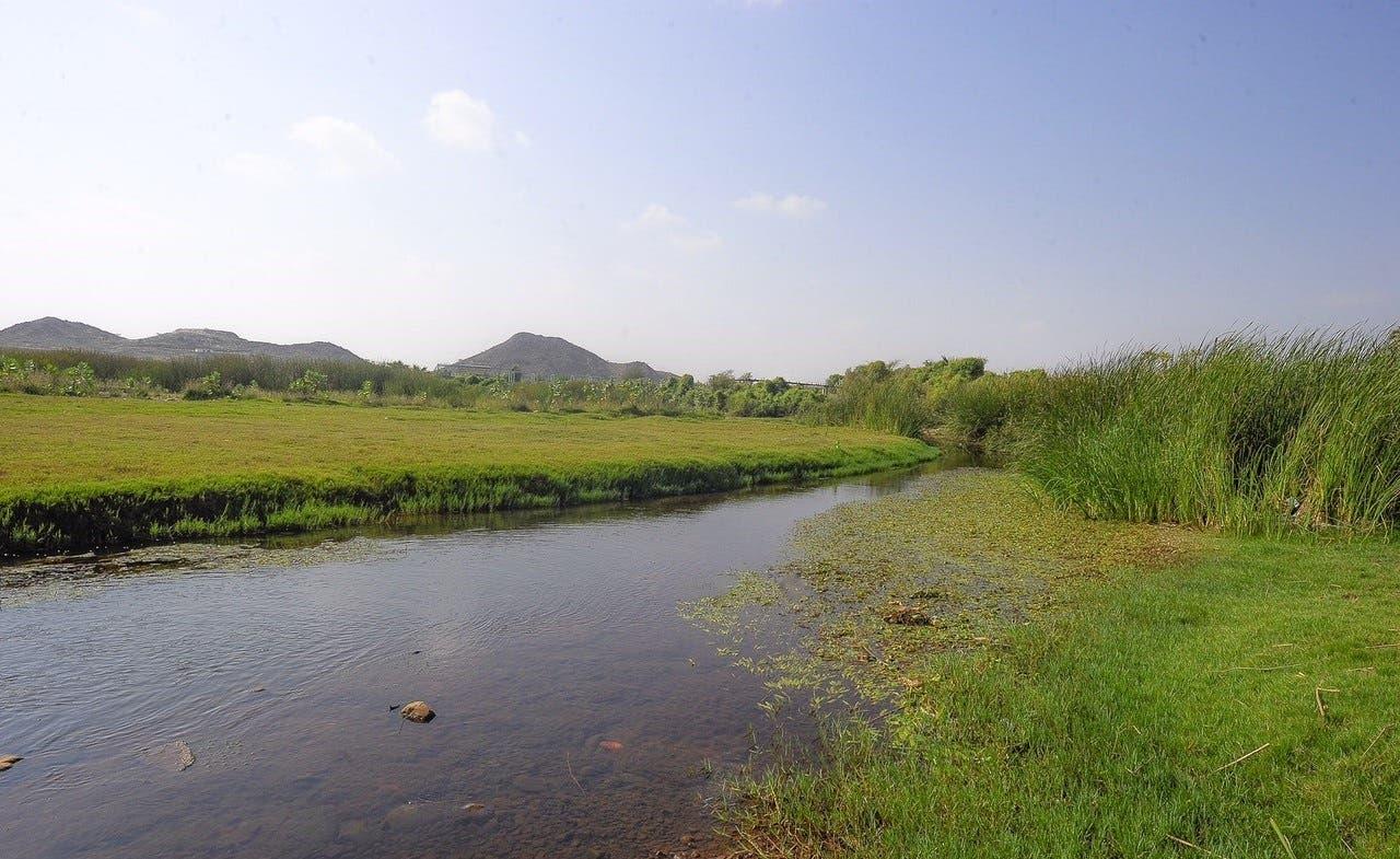 Al-Fatyh valley in Al-Darb, Jazan province (Al Arabiya)