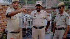 مودی کے لئے دھمکی آمیز سندیسہ لیجانے والا کبوتر 'گرفتار'