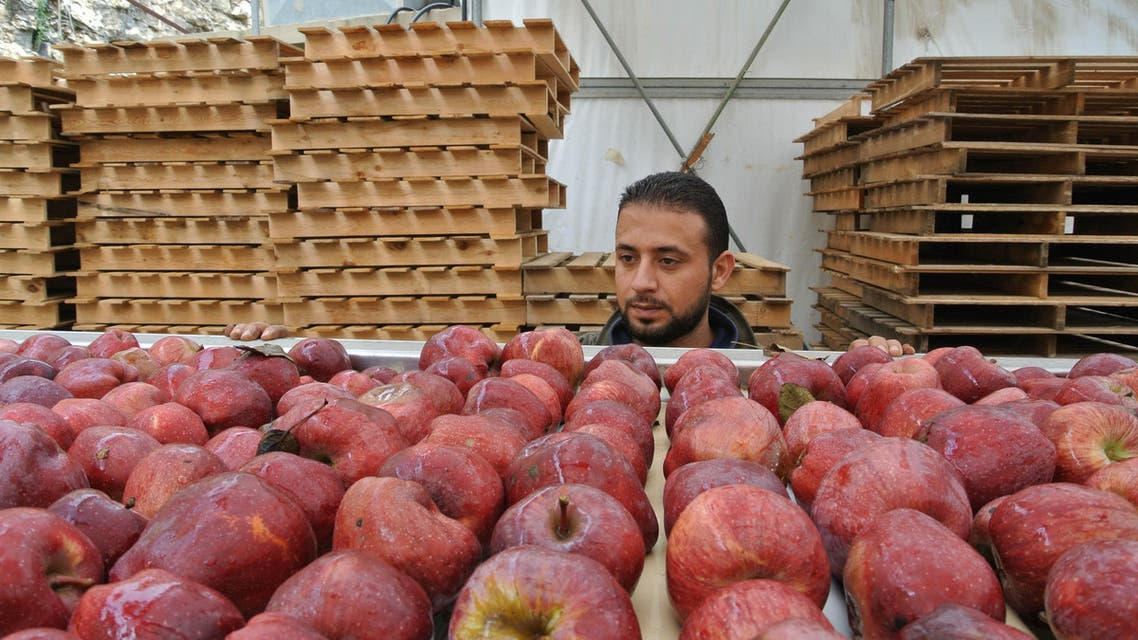 More than 750,000 boxes of apples are stacked in farms in different regions of the country. The closed borders with Syria have created a major obstacle for Lebanese agricultural products to reach their major destinations in the GCC. (File photo)