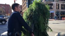 امریکا:ٹریفک میں رکاوٹ 'متحرک درخت ' گرفتار!