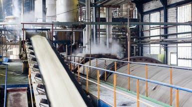 مصر ترفع سعر السكر المدعم 20% لـ7 جنيهات للكيلوغرام