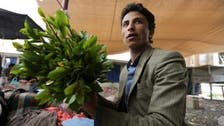 Houthi militias' actions forcing Yemen academics into selling Qat