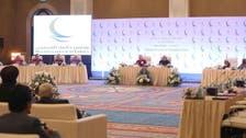 شيخ الأزهر:الإمارات بقيادتها الرشيدة صارت نموذجا للتطور