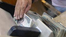 Egypt nets $1 bln in foreign investment within two days of rate hike