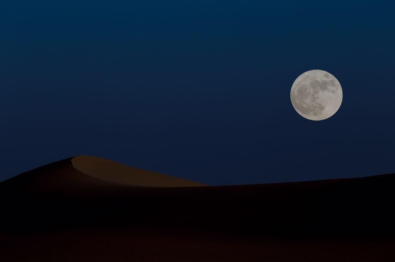 بعدسة: محمد الغنام وعبدالرحمن البريه