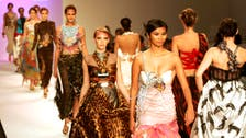 Which Arab country dominates the top MENA models?
