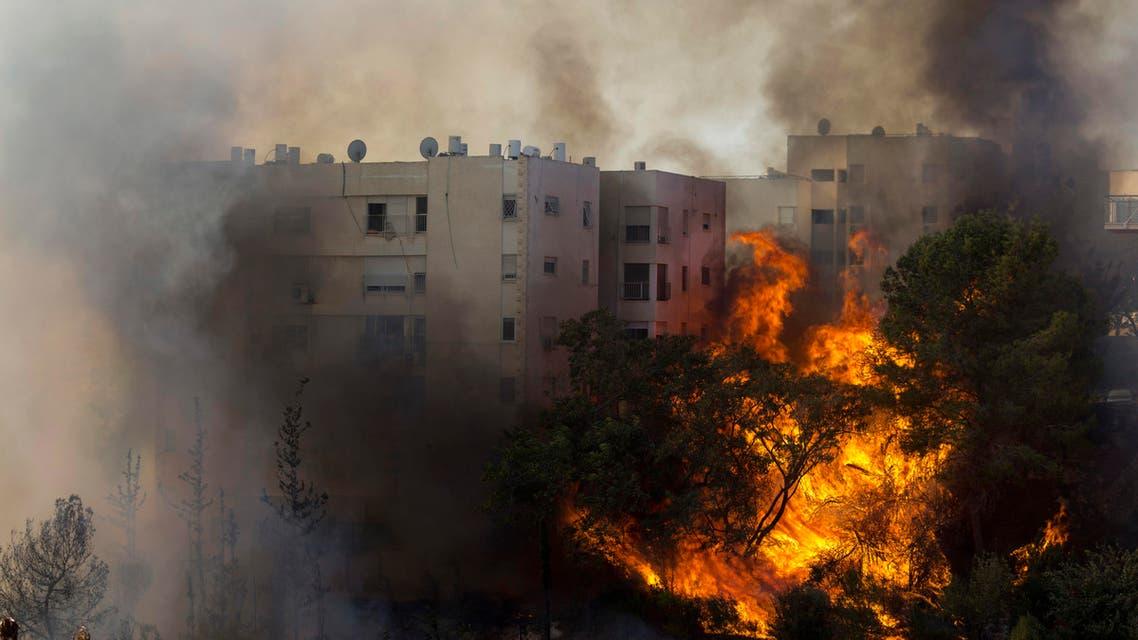 A fir burns in Haifa, Israel, Thursday, Nov. 24, 2016. AP