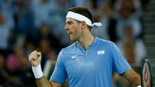 Ice-cool Del Potro paves the way for Argentina's Davis Cup win