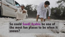 Could Saudi Arabia be a fun place to be when it snows?