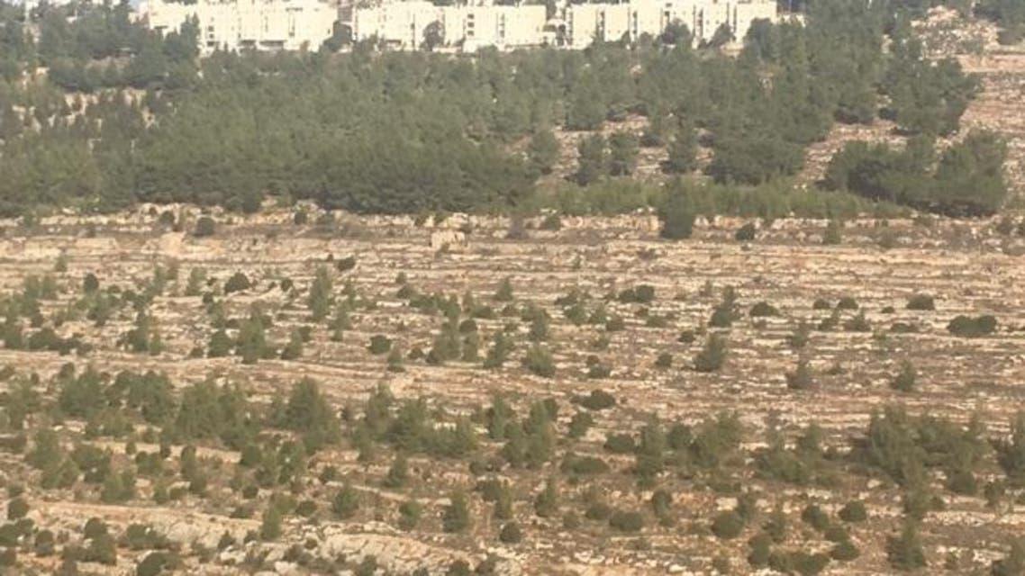 محيط القدس