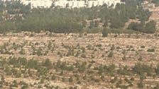 إسرائيل تطوق القدس ببناء 770 وحدة استيطانية جديدة