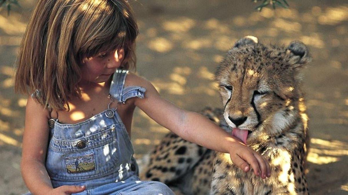طفلة الأدغال قضت سنوات بين الحيوانات المفترسة