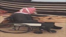 Video captures heartwarming moment camel comforts elderly Saudi man
