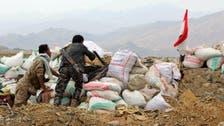 12,000 fighters in west coast of Yemen to retake Taiz and Hudaydah