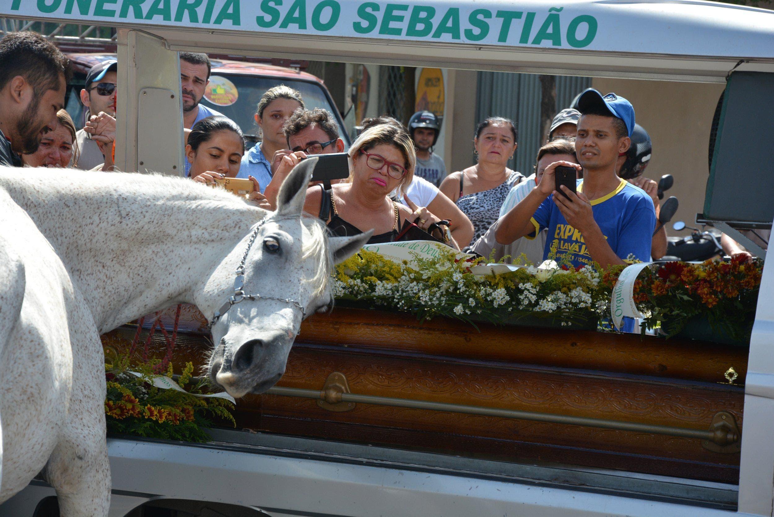 مؤثرة لحصان يبكي وفاة صاحبه 7cc8a608-f440-41fe-8a54-3c96e530cd71.jpg